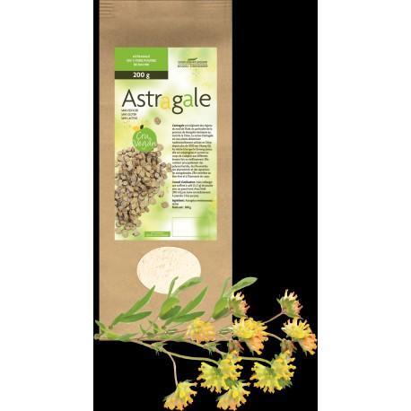 ASTRAGALE - Pure Poudre de Racine sachet de 200 g